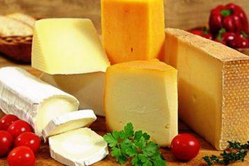 קרנבל החלב- על האכילה הגשמית כמסייעת להארת החג ברוחניות – ניוזלטר שבועות