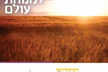 ממנוחת השבת למנוחת עולם | חסידות בפרשה – במדבר